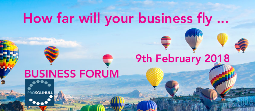 How far will your business fly - Business Forum 9 February 2017 Solihull Professionals Sydney Mitchell